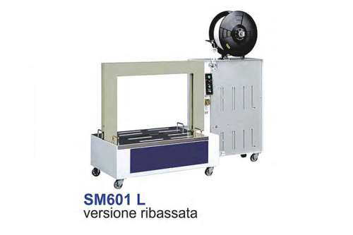 SM601L.jpg