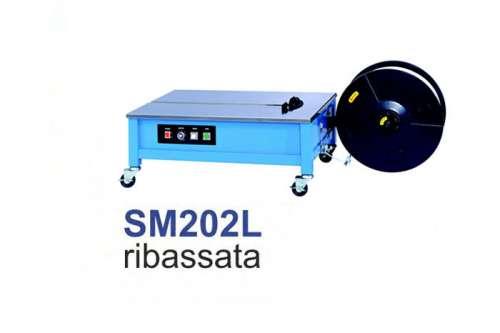 SM202._Ribassata.jpg